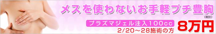 メスを使わないお手軽プチ豊胸8万円(税別)